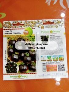 dailyhatgiong.com094.771.0324