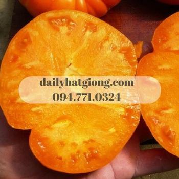 Thịt của cà chua cam có hình dáng giống xớ thịt của quả cam